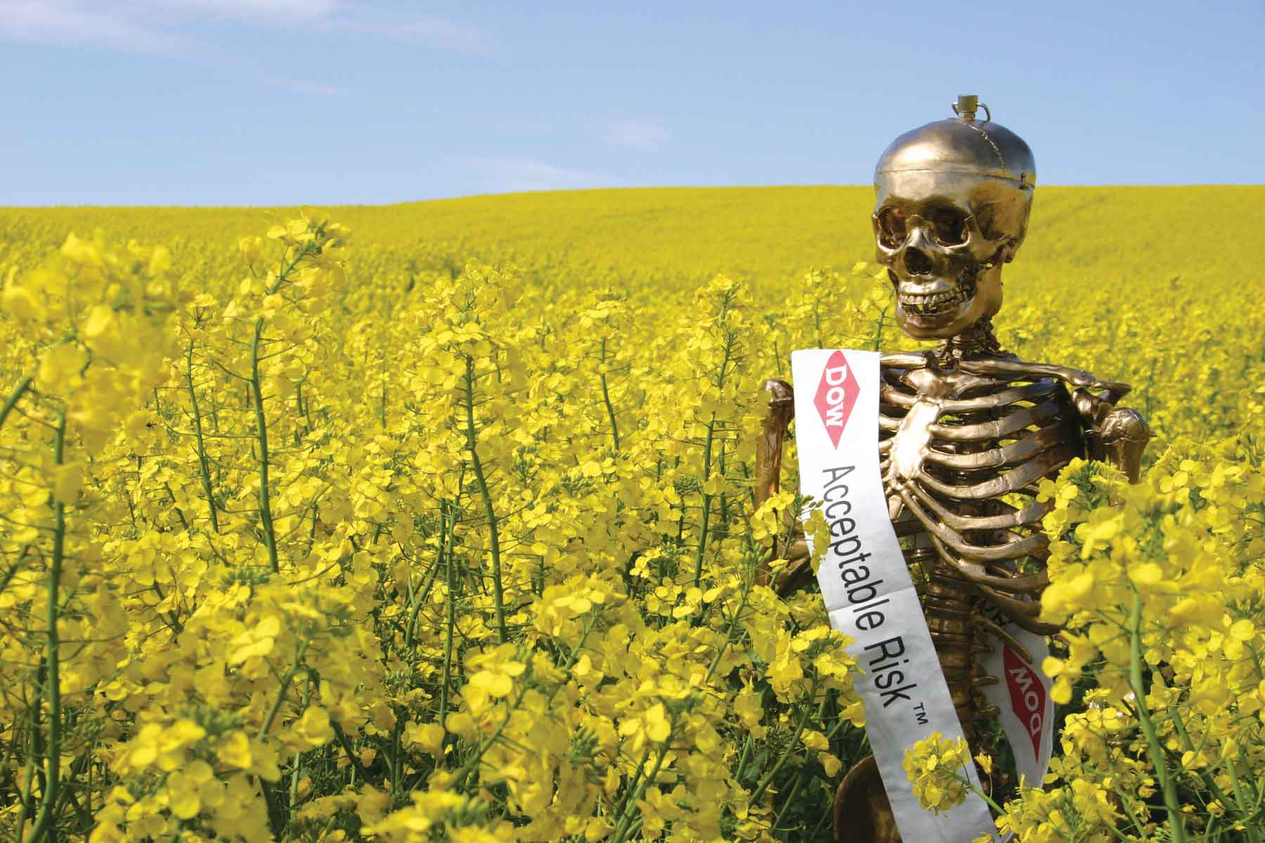 Gilda, The Golden Skeleton. Production still from The Yes Men Fix the World, 2008.