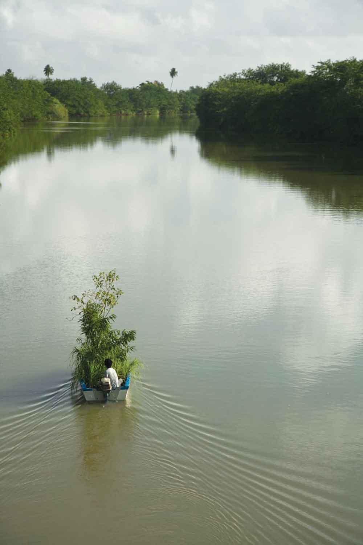 """Kim Myeongbeong, Boat Tree, 2011, 64"""" x 96"""". Photo: Jason Mena."""