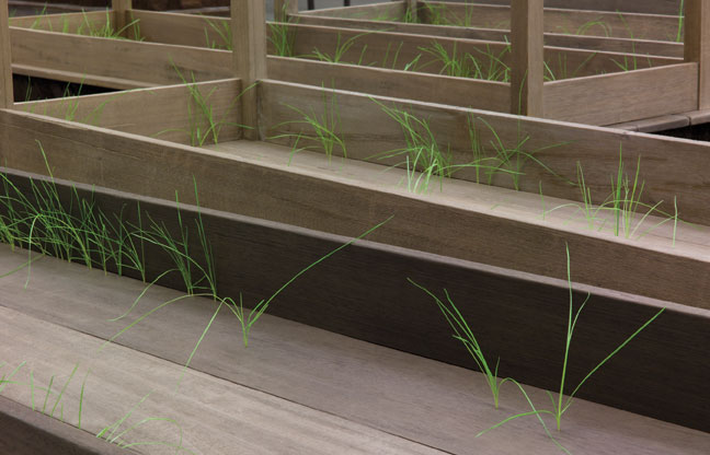 """Doris Salcedo, Plegaria Muda (detail), 2008–10, wood, concrete, earth, and grass, one hundred and sixty-six parts, each: 64-5/8"""" x 84-1/2"""" x 24."""" Overall dimensions variable. Installation view, MUAC, Mexico City, 2011, Inhotim Collection, Brazil. Photo: Jason Mandella. Courtesy of White Cube."""