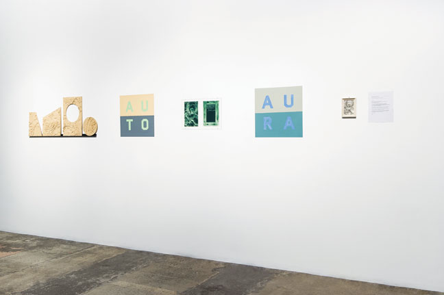 Anton Ginzburg, AU01, 2015, installation view at Fridman Gallery. Photo: Paula Abreu Pita.
