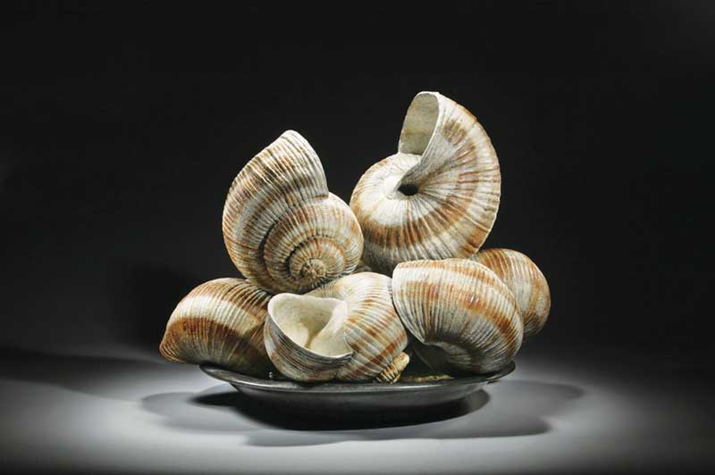 Luis Montoya and Leslie Ortiz, Series Escargot I – Dinner Plate, 2005, bronze. Courtesy of ArtSpace Virginia Miller Galleries.