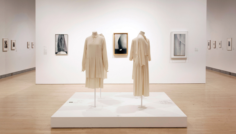 """""""Georgia O'Keeffe: Living Modern"""" (March 3 – July 23, 2017), installation view at the Brooklyn Museum, New York."""